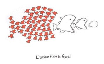 L'union fait la force!